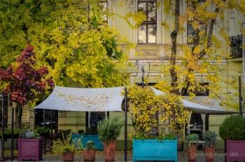 Borsos Szilárd: Az ősz színei Kecskeméten