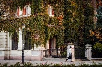 Borsos Szilárd: Közeleg az ősz Kecskeméten