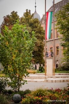 Borsos Szilárd: Magyar zászló a Kecskeméti Városháza mellett